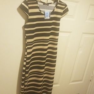 Summer dress prefect for the office